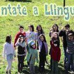 Llingua4