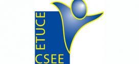STEs defiende en Europa mejoras para los docentes y se solidaríza con el profesorado de Turquía